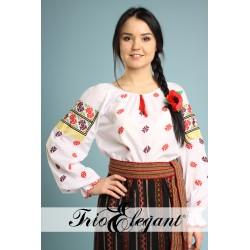 Costum National Moldovenesc femeiesc nr2